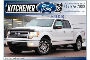 2011 Ford F-150 Platinum/LEATHER/4X4/PWR RUNNING BDS/HEAT&COO... Kitchener / Waterloo Kitchener Area image 1
