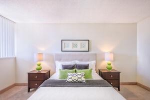 Beautiful Large 1 Bedroom Apartment Includes Utilities!