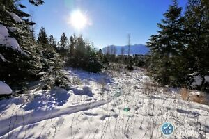 7 acre Vacant lot, Creston Open to offers! 198236