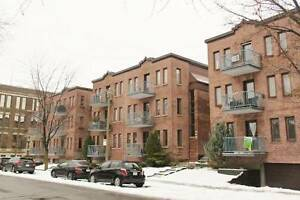 Gorgeous 2-BR Condo in Little Burgundy, Sud-Ouest