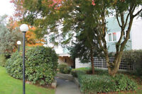 3 BDRM Townhouse available at Garden Court Co-op