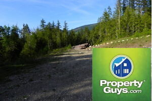 Steps to beach, 4.5 acre lot with utilities Nakusp 196907