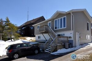 Open Concept, Income home, many upgrades, close to schools
