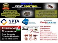 Pest Control-Get rid of Bed Bugs|Cockroaches|Mice-Stratford, Ilford, Dagenham, Plaistow, Walthamstow