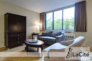 Modern Furnished Studio for Short Term Rental in Downtown