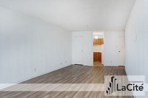 Bachelor (2.5) Apartment for rent - Lots of Natural Light!