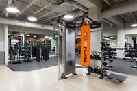 Beautiful Antares Luxury Suites - New Gym, Cafe & More!