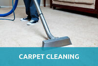 EUROPEAN LADIES PROFESSIONAL CARPET and HOUSE CLEANING