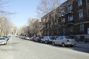 5 1/2 Plateau apartment with spacious layout - near McGill
