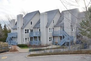 $2000 Credit for Blue Mountain Rental