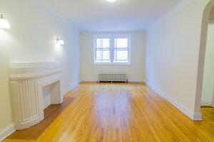 Pet Friendly 1 Bed in Centretown - Newly Updated!