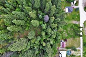 Vacant double lot in Salmo BC #198335