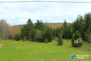 Hwy 19, Inverside (at Broad Cove Marsh Rd.) Inverness, NS