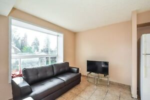 STEPS TO WLU STUDENTS RENTALS ALL INCL, FREE WIFI, A/C Kitchener / Waterloo Kitchener Area image 6