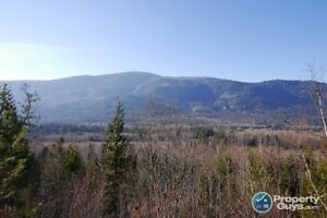 60.8 acre sub-dividable lot in Salmo ID 197820