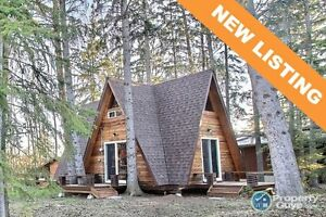 NEW LISTING! Turtle Lake A-Frame, close to beach
