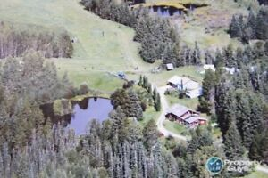 Acreage (361 acres) with 3 bed home! 104087