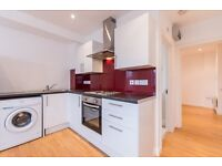 Brand new modern big 1 bedroom flat located in West Norwood. Water rates included