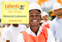 Warehouse Labourer and Order Picker