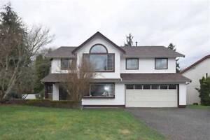 1 Bedroom suite for rent in Maple Ridge $950