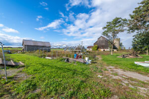 Farm In Glenbrook, Opportunity To Live, Work On Your Own 148.59