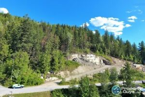 Fully serviced 1/4 acre lot LAKE and MOUNTAIN VIEWS 198743