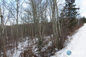 Lot 5 Penny Lane, North River, Truro, NS