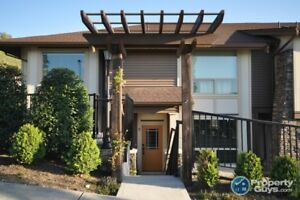 Gorgeous Townhome @ The Terraces! Open House Sun. May 27 1-5pm!!