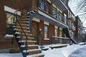 4br - $525 / 4br - $525/person 4 bedroom apartment in Plateau -