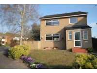 Fantastic and spacious 3 bedroom house to rent for Professionals, Cambridge, Sawston