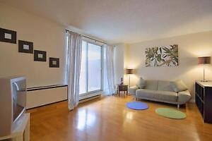Best Price in the South End! Renovated, Clean & Quiet 1 Bedroom
