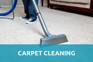 HOUSE CARPET AND STEAM CLEANERS