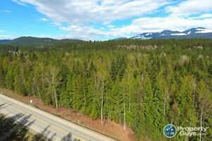17.5 acres untouched land in Edgewood Sign #198076