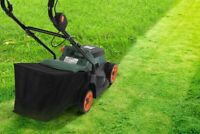 Affordable Lawn Care, Yard Care, Garbage Hauling