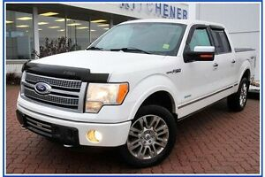 2011 Ford F-150 Platinum/LEATHER/4X4/PWR RUNNING BDS/HEAT&COO... Kitchener / Waterloo Kitchener Area image 3