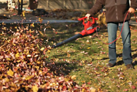 Fall clean up and gutter maintenance