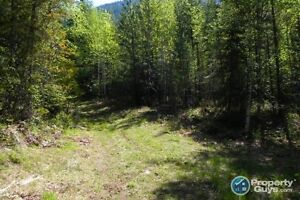 24.9 sub-dividable acres in Slocan ID 196881