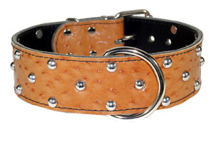 Brown Leather Collar Hand Made W/Turquoise Decoration Yellowknife Northwest Territories image 3