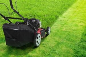 Affordable lawn mowing Brisbane from just $49