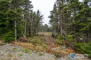 1/2 acre residential building lot - 58 Byrne's Lane Torbay, NL