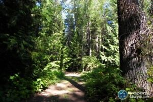 Subdivide to suit your needs! 2.2 to 5 Acres near Salmo 196861