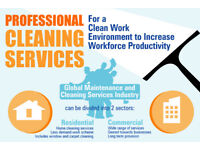 North East SpeddyCleaner '' Professional Domestic to Commercial Cleaner Service''
