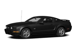 2008 Ford Mustang V6 - Just arrived! Photos coming soon!