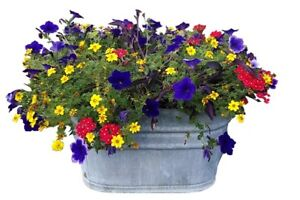 Galvanized Square Steel Tub / Planter
