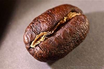 100% Jamaican Blue Mountain Coffee Beans Peaberry Whole Bean or Ground 2 Pounds