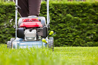 SV Property Care Lawn mowing, Aeration, Gardening