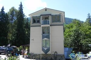 Triplex + home + cabin in Nelson 197316