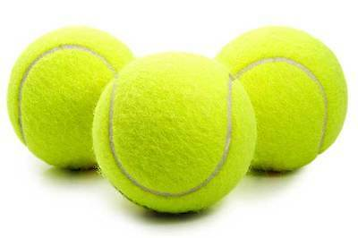 ***NEW*** 3/6/12/24 Tennis Balls Sports Tournament Outdoor Fun Cricket Beach Dog