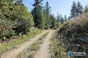Unique opportunity! 4.5 acre property in Kaslo 198036