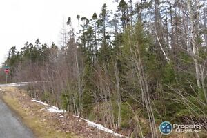Valley - Treed Corner Lot in Highly Sought After Area